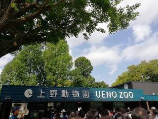 無料開園日の上野動物園 混雑状況