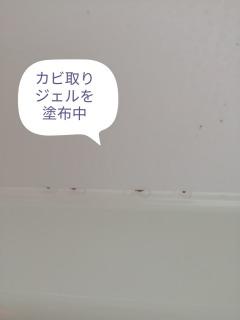 カビ取りジェルを浴槽の黒カビに塗布している状態