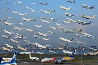 初心者必見!はてなブログからWordPressへ移行作業が無料の羽田空港サーバーさんに依頼してみた